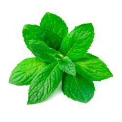 EPATOfluid