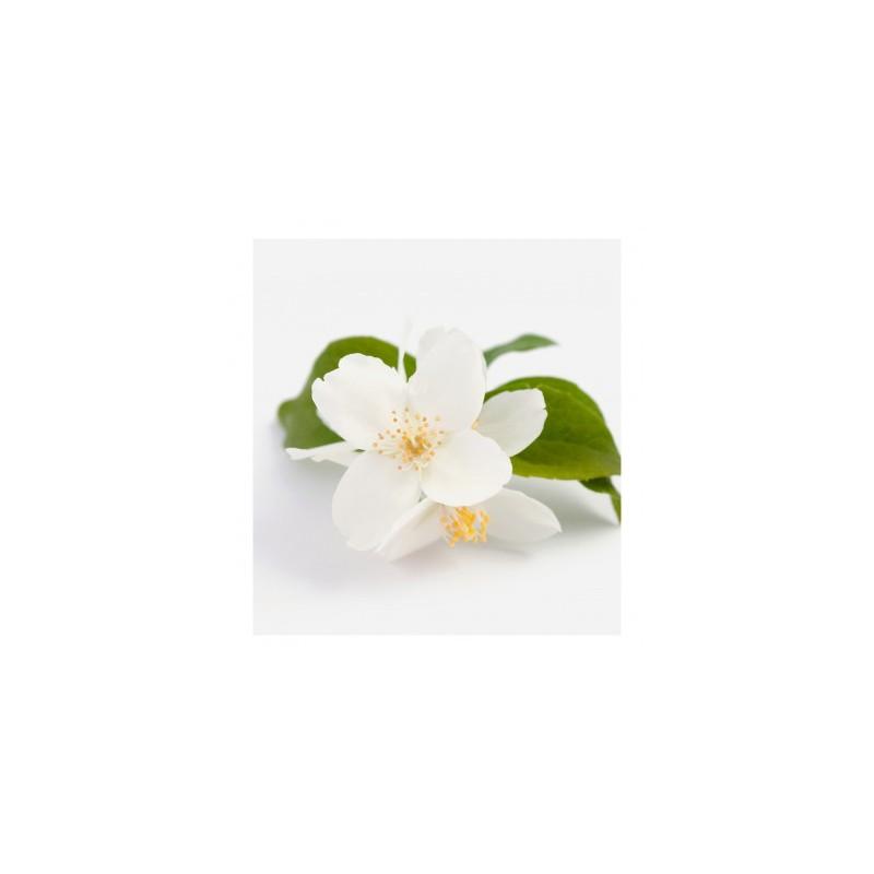 LeniCrema Aloe Vera sollievo e protezione pelli arrossate