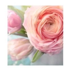Doccia shampoo THE VERDE ESTRATTI MULTIFIORI E FRUTTI  100ml